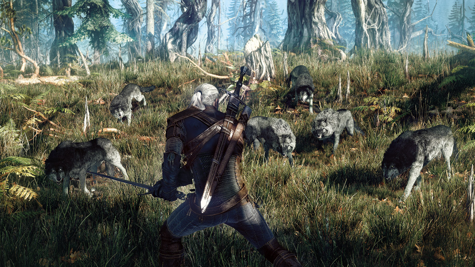 Screenshot-Geralt-Combat-Wolves-Grass.jpg